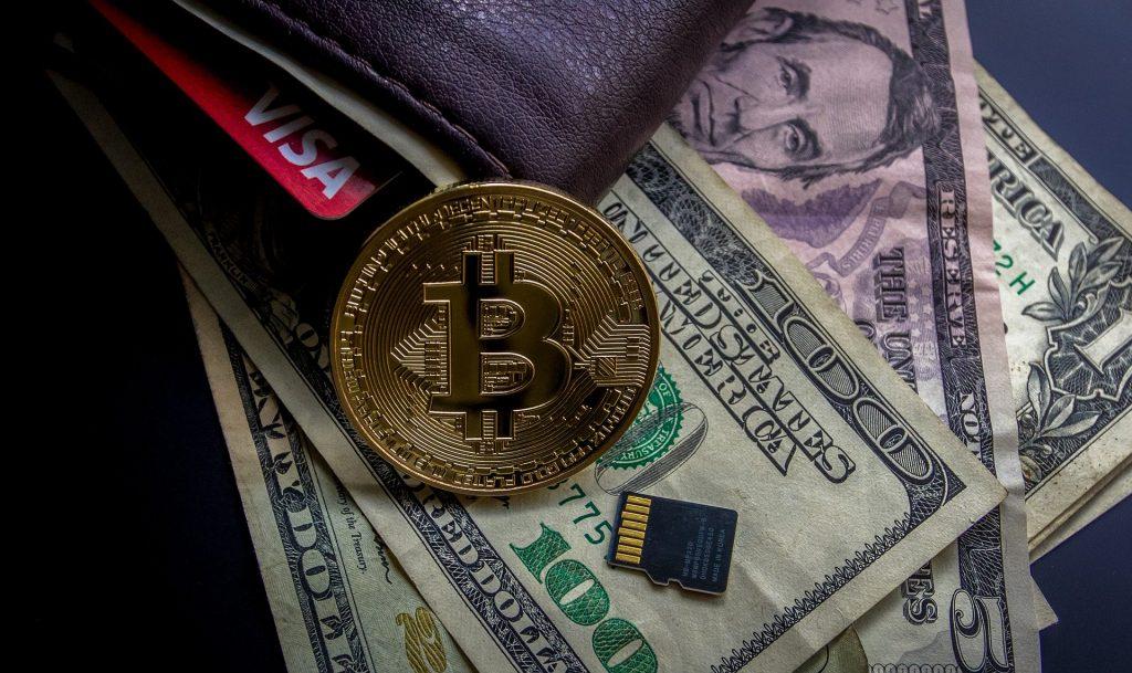 diesjährigen Halbierung bei Bitcoin Profit